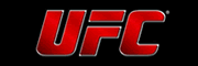 Bet on UFC fights at Bodog!